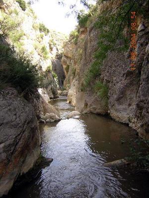 Ruta Monforte-Plenas en el río Aguasvivas